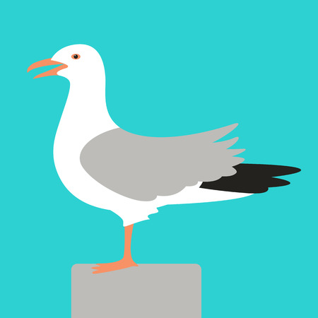 gull,vector illustration ,flat style, profile view