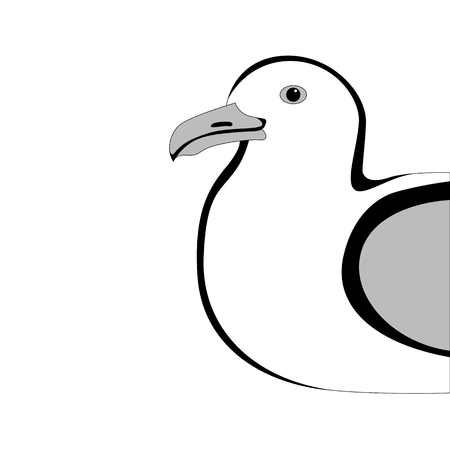gull,vector illustration , lining draw, profile view