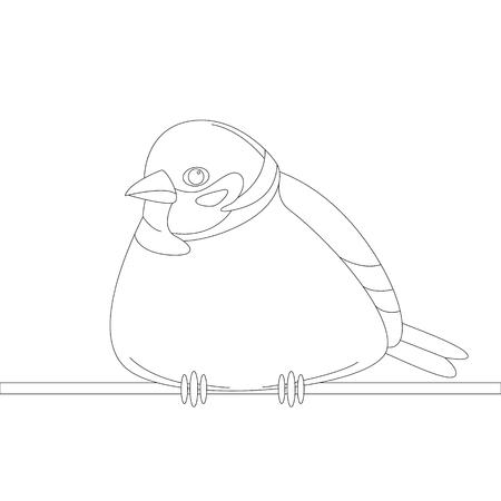 bird sparrow, vector illustration, lining draw,   front view Illustration