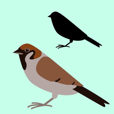 bird sparrow, vector illustration, flat style,  profile view