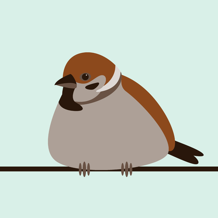 bird sparrow, vector illustration, flat style, front view