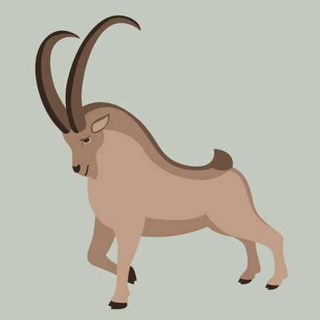 mountain goat, vector illustration ,  profile view, flat style