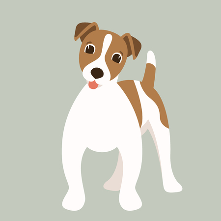 Terrier Jack Russell puppy,vector illustration,flat  style,front view  イラスト・ベクター素材