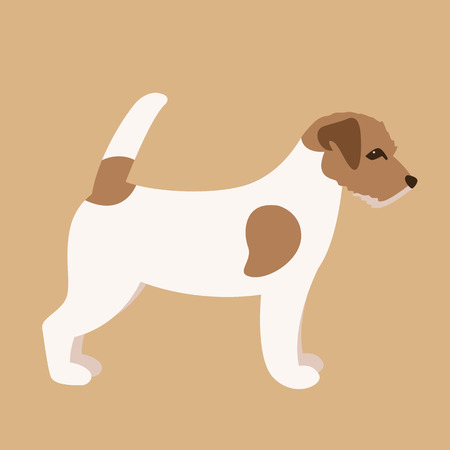 Terrier Jack Russell puppy,vector illustration,flat  style,profile view
