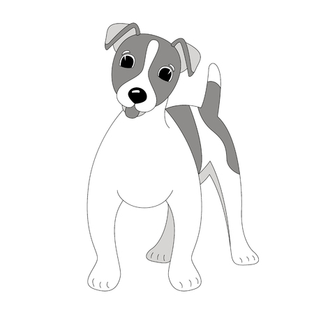 Terrier Jack Russell puppy,vector illustration, lining draw ,front view