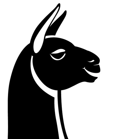 lama head, vector illustration,  black silhouette, profile side