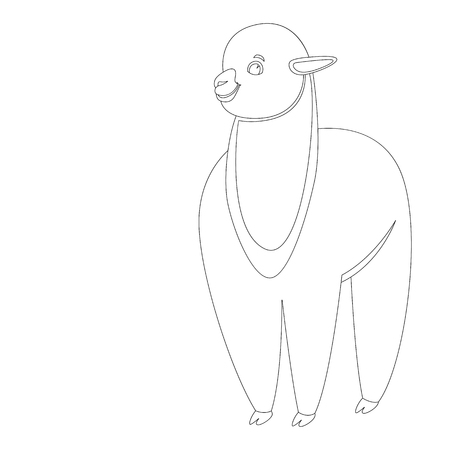 baby lama, vector illustration,lining draw,front side