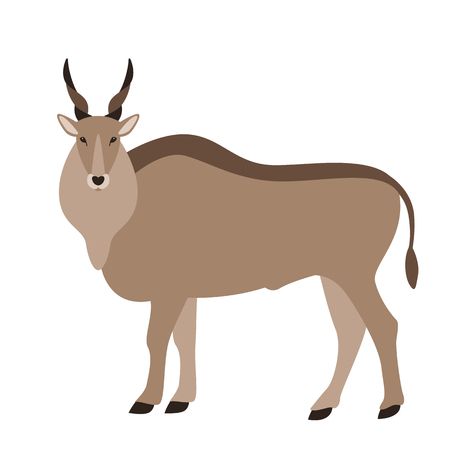 antelope, vector illustration, flat style, profile side