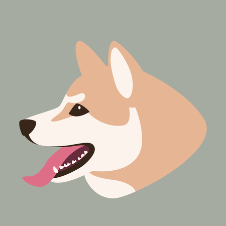 akita dog head,  vector illustration,  flat style, profile side  イラスト・ベクター素材
