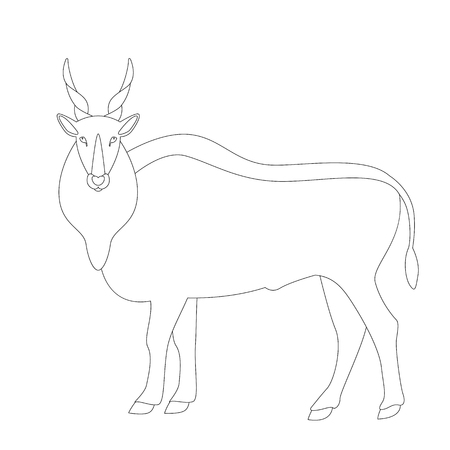 antelope, vector illustration,  lining draw, profile side