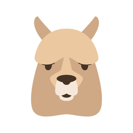 lama face,   vector illustration,  flat style, front side