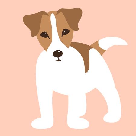 Russell Terrier puppy,   vector illustration, flat style Illustration