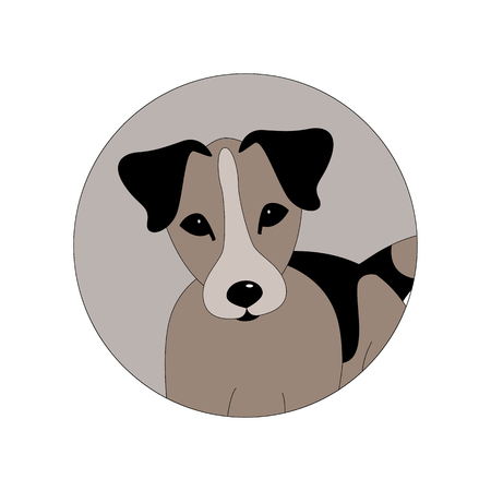 Russell Terrier puppy head,   vector illustration, front side