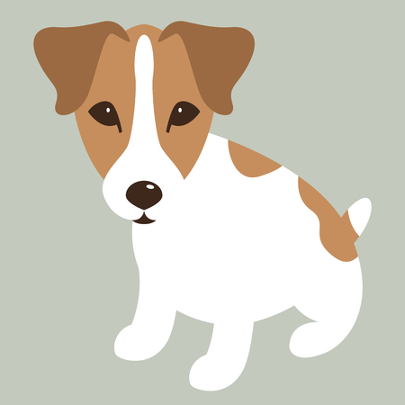 Russell Terrier puppy,   vector illustration, flat style  イラスト・ベクター素材