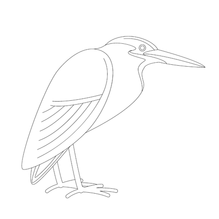 green heron,  vector illustration,profile side,lining draw
