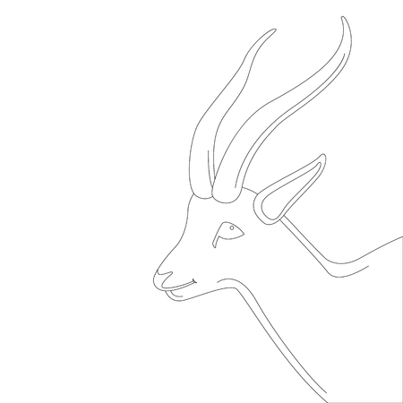 antelope  head , vector illustration,lining draw,profile side