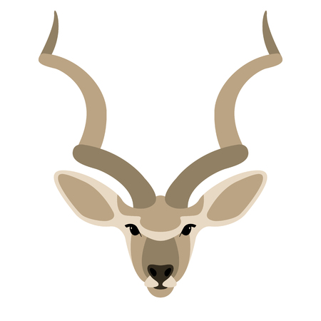 antelope face, vector illustration,flat style,front side