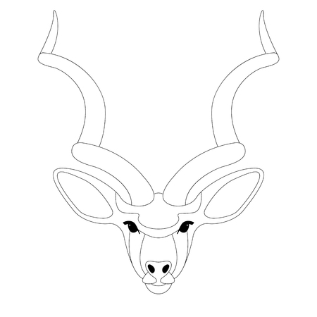 antelope face, vector illustration,lining draw,front side  イラスト・ベクター素材
