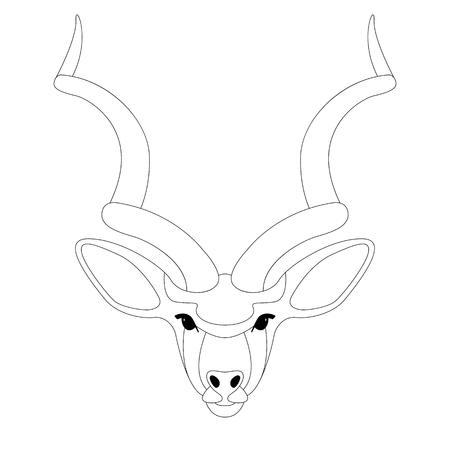 antelope face, vector illustration,lining draw,front side Illustration