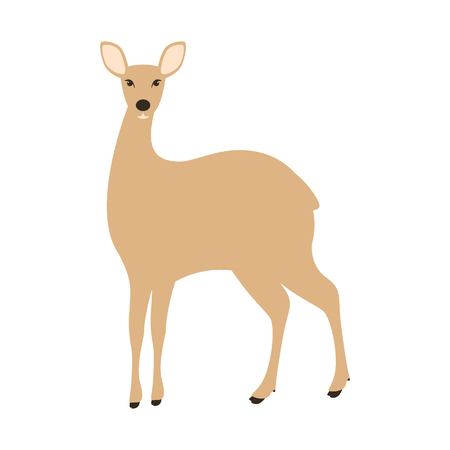 antelope , vector illustration,flat style,front side  イラスト・ベクター素材