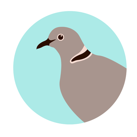 dove  head, vector illustration, flat style,profile view