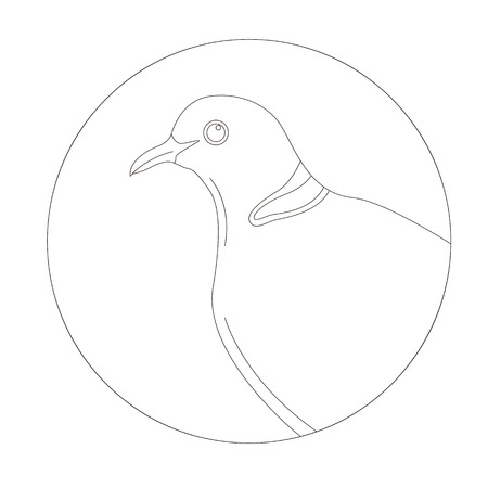 dove  head, vector illustration,lining draw,profile view  イラスト・ベクター素材