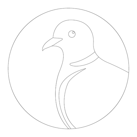 head turtledove, vector illustration, lining draw ,profile view