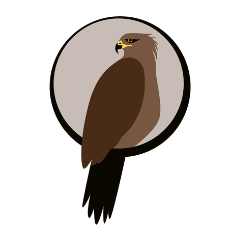 eagle hawk .vector illustration, flat style ,profile view