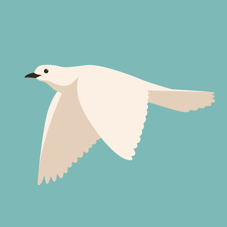white dove.vector illustration, flat style ,profile view
