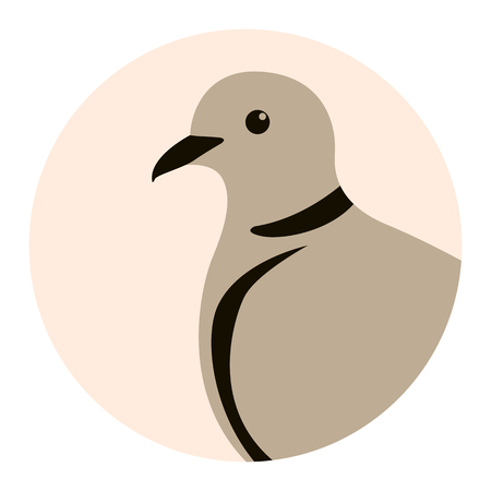head turtledove, vector illustration, flat style ,profile view  イラスト・ベクター素材
