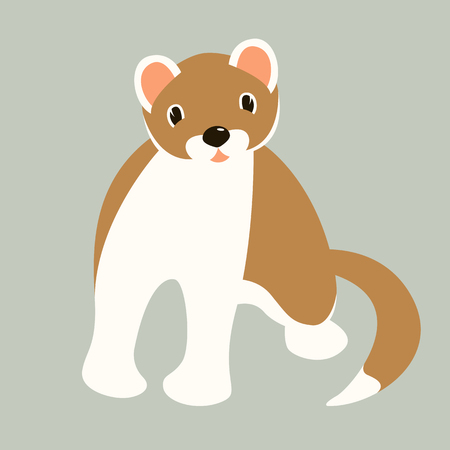 cartoon ermine, vector illustration,flat style,front view