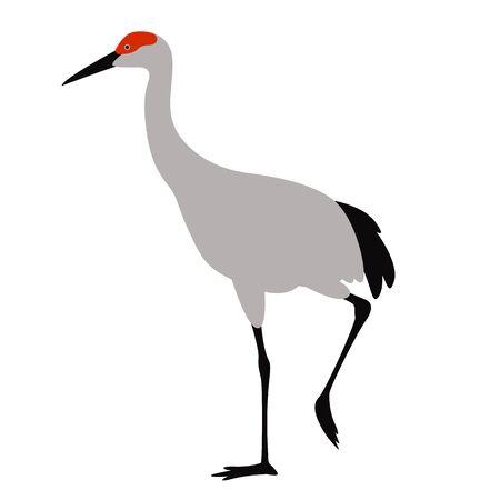 crane bird , vector illustration, flat style, profile side