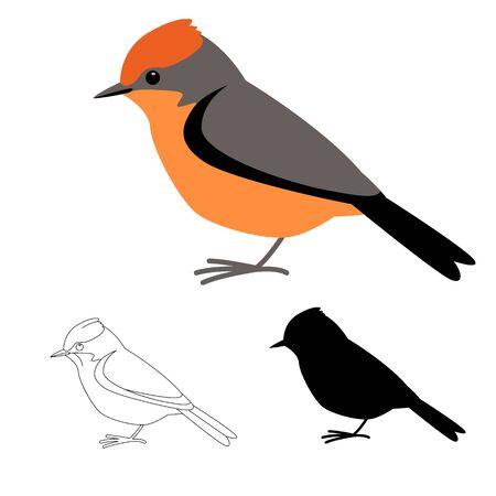 robin bird ,flat style, black silhouette, lining draw set 일러스트