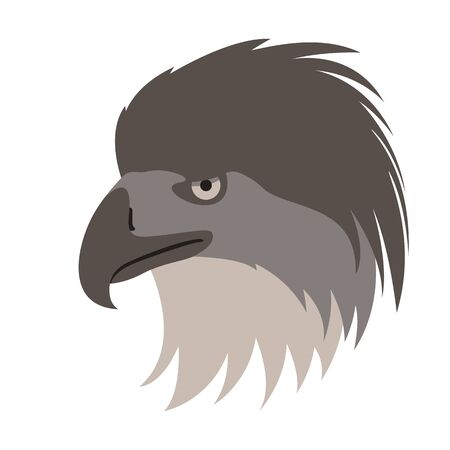 eagle bird head,  vector illustration,flat style, profile side
