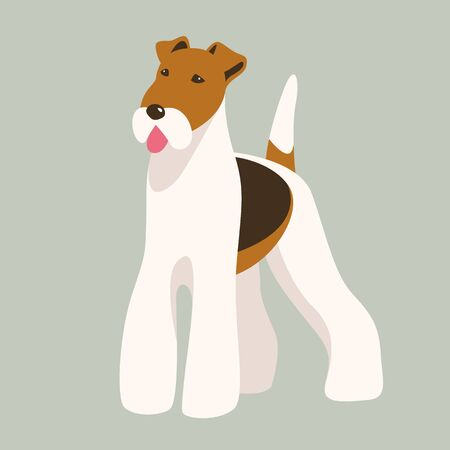 Terrier dog,vector illustration, front view,flat style