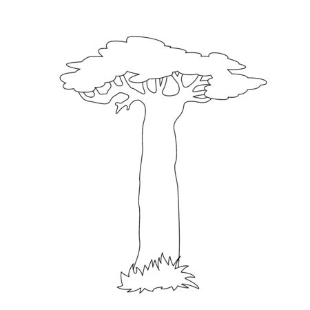 lone baobab tree, vector illustration, lining draw 일러스트