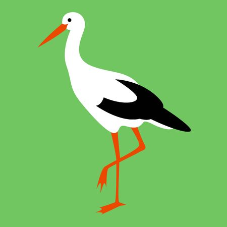 stork walking , vector illustration, flat style, profile side