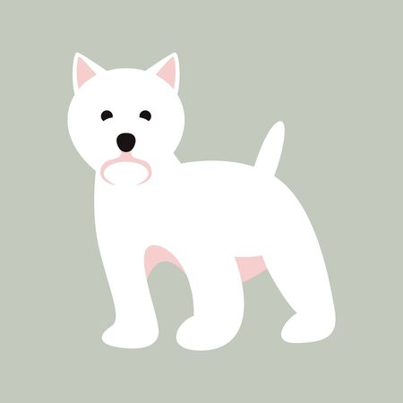 white doggy, vector illustration, flat style, front side 일러스트