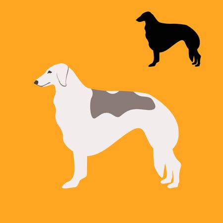 greyhound dog , vector illustration, flat style, black silhouette, set