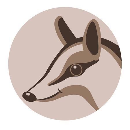numbat face , vector illustration, flat style, profile side