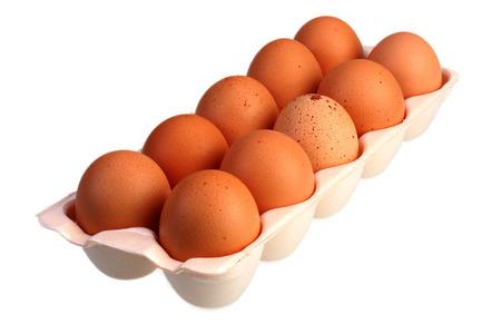 free range: A carton of fresh free range eggs on a white background