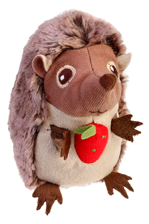 plush hedgehog toy on white background with Clipping Path