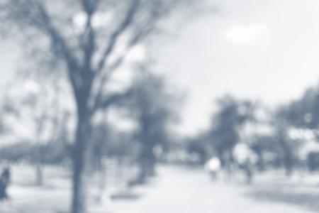 Blurred park natural backgroud