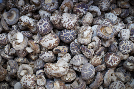 Dried shiitake mushroom and background