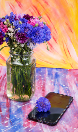 variegated: A bouquet of variegated cornflowers with a mobile phone on a color background Stock Photo