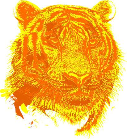 Tiger head clip art design illustration for use in web or print Imagens