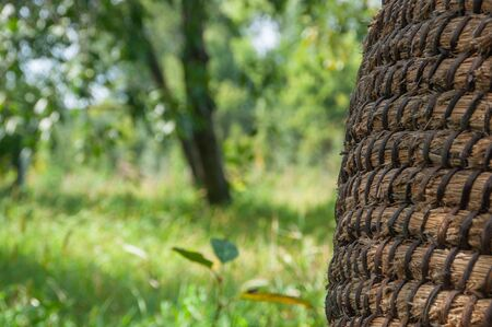 Wicker or rattan basket texture. Basket for straw, closeup.