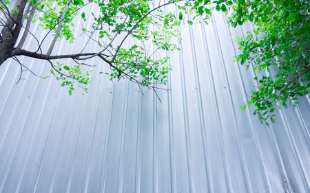 Tree with Metal sheet at construction site, Eco construction photo