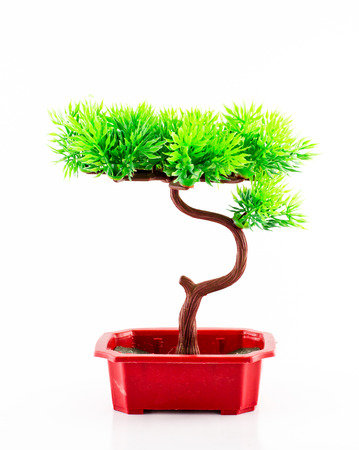 Plastic Bonsai in red pot on white  photo