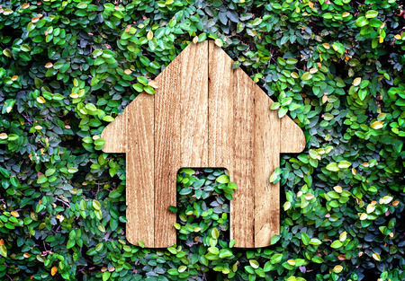 Home icon on green leaves wall,Eco home system. photo